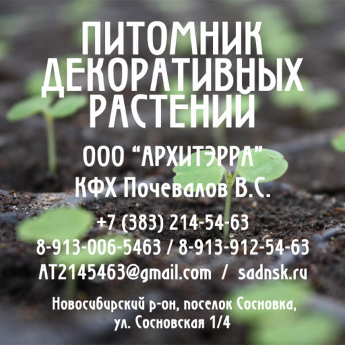 архитэрра_о нас_квадро